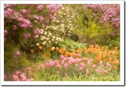 Antique Spring Garden